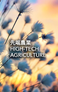 business-hightech-agriculture